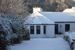 winter2010-013